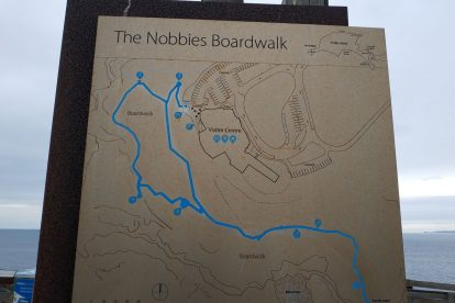 the nobbies 17