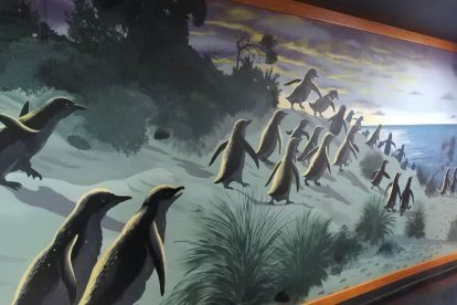 penguin parade 11