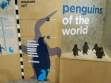 penguin parade 14